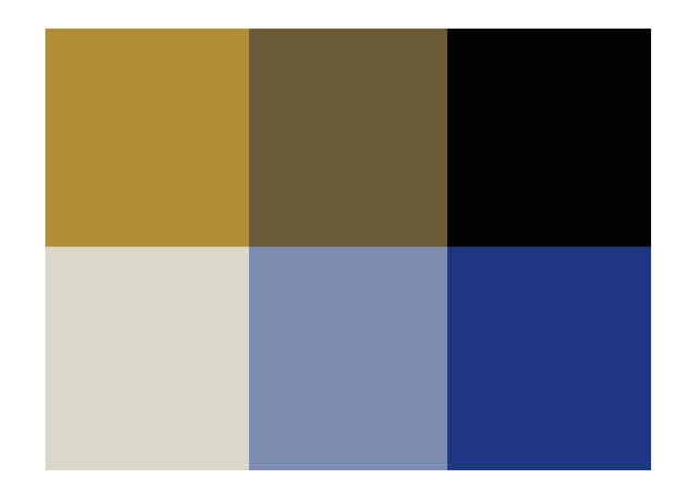 Is It White And Gold Or Blue And Black The Truth Behind The Dress