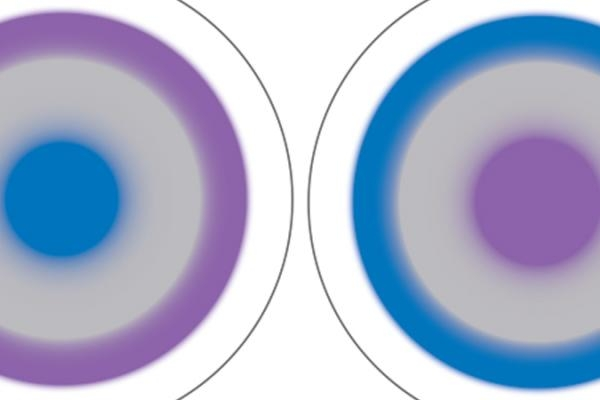 multifocal contact lens fitting guide